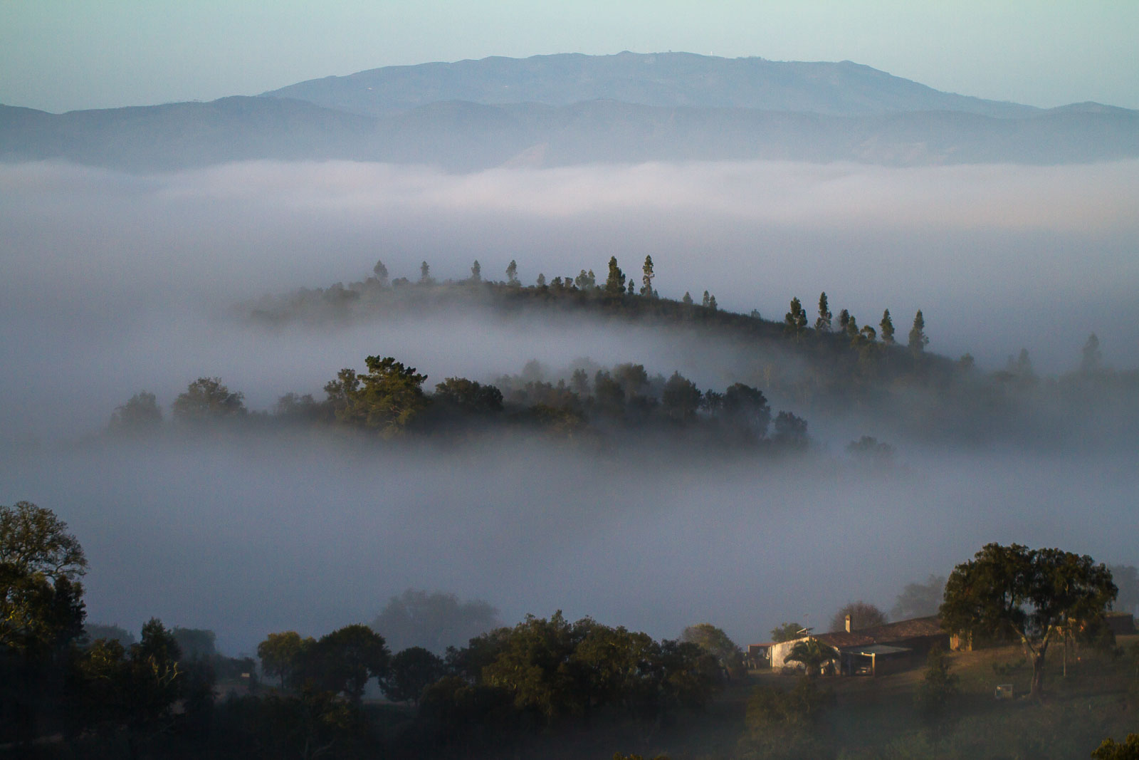 Mist in the valley-6199.jpg